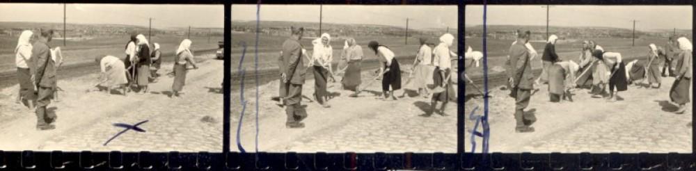 Archivar – Kamera – Weltkrieg